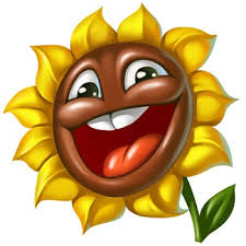 Flowers sol 225x225