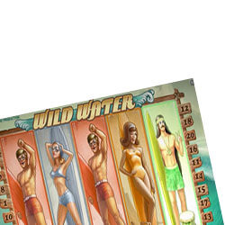 Wild-Water-surfdudes-250x250