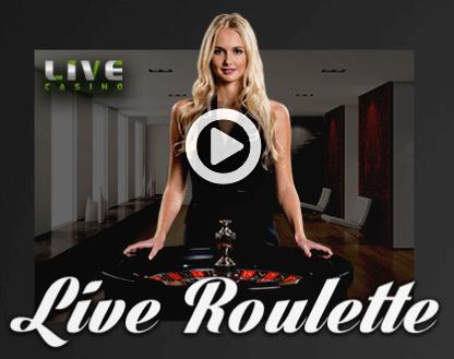 mr-ringo-live-casino