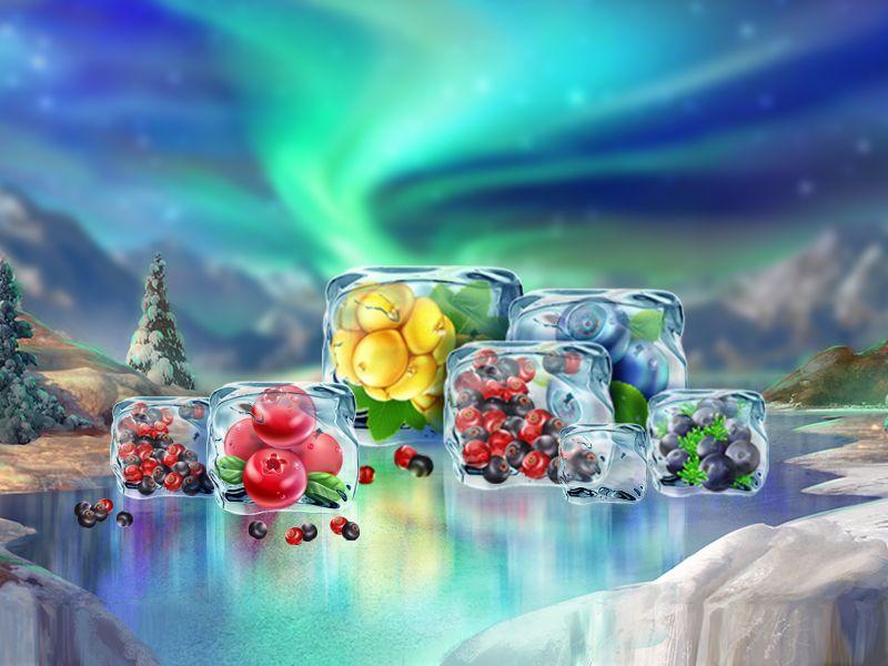 Winterberries 3