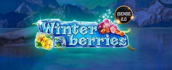 Winterberries Featured
