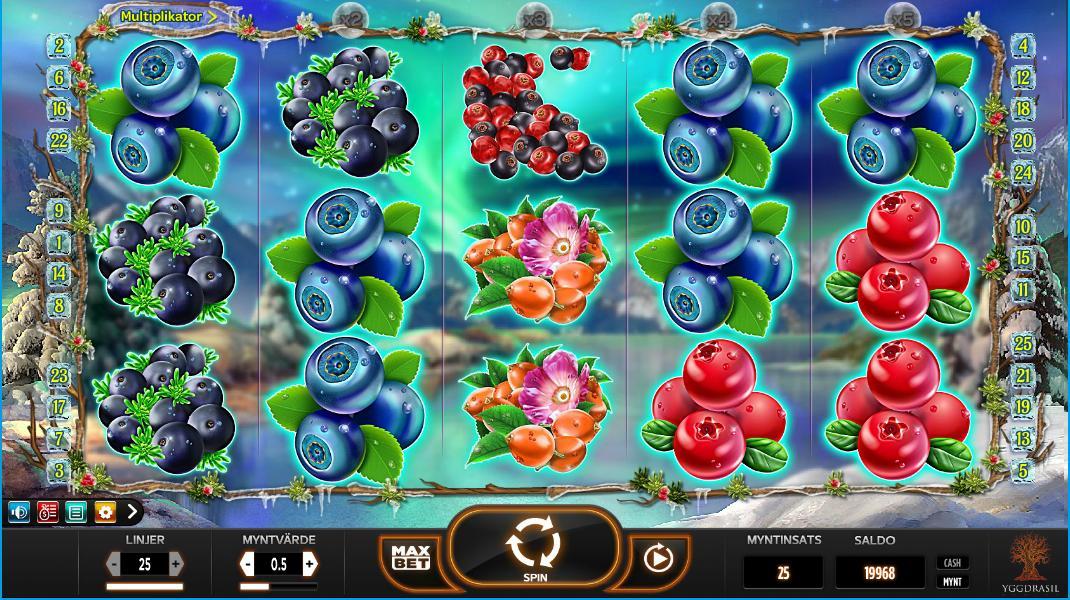 Winterberries spelplan