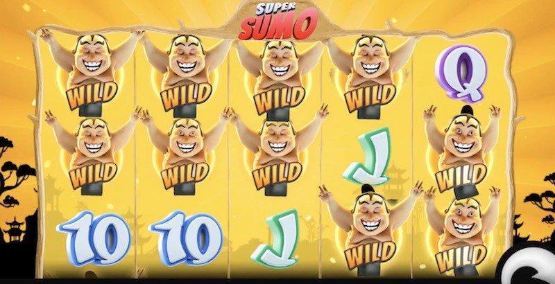 Super Sumo Wild