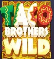 Taco Brothers wild