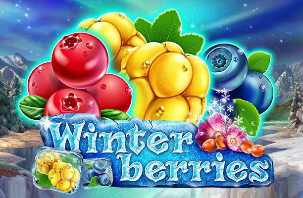 Winterberries 1