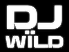 dj wild wild