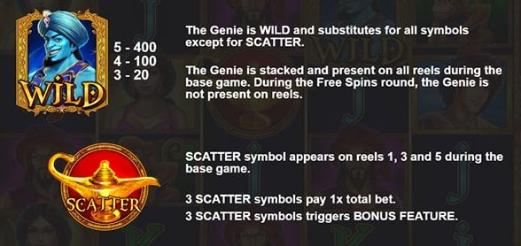 3 Genie Wishes Bonus