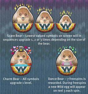 Babushkas Bear Features